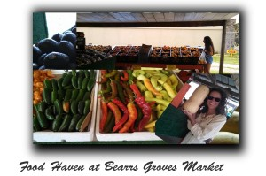 Food shopping at Bearrs Groves Market